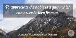 Johann Wolfgang von Goethe Quote About Appreciate, Literature, Gains: To Appreciate The Noble Is...