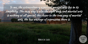 Art Quotes, Bruce Lee Quote About Art, Lying, Expression: To Me The Extraordinary Aspect...