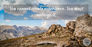 Albert Camus Quote About Understanding, Experience, Minimalist: You Cannot Create Experience You...