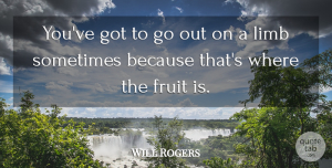 Summer Quotes, Will Rogers Quote About Leadership, Summer, Risk: Youve Got To Go Out...