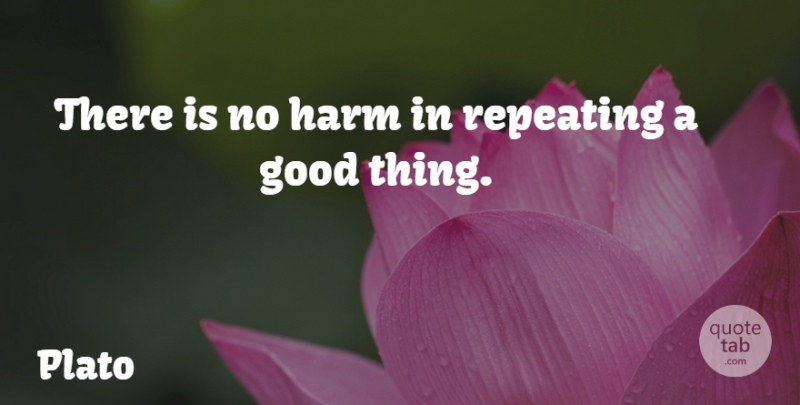 Plato Quote About Philosophical, Good Things, Harm: There Is No Harm In...