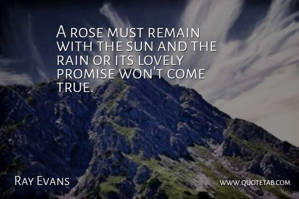 Ray Evans Quote About American Musician, Lovely, Promise, Rain, Remain: A Rose Must Remain With...