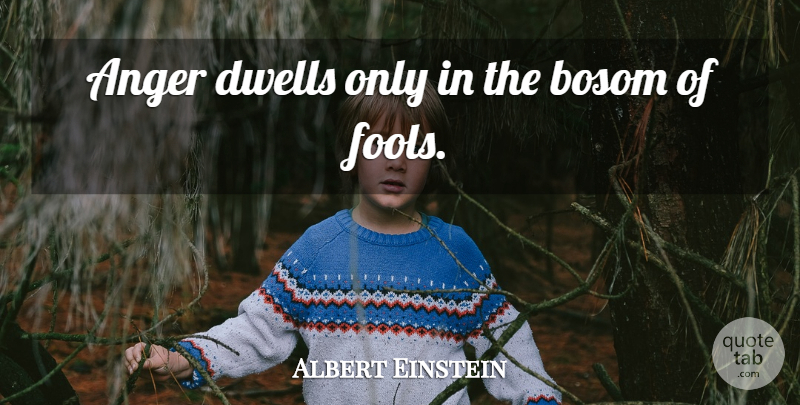 Albert Einstein Quote About Inspirational, Leadership, Forgiveness: Anger Dwells Only In The...