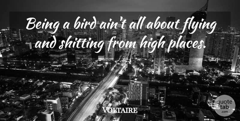 Voltaire: Being a bird ain\'t all about flying and shitting ...