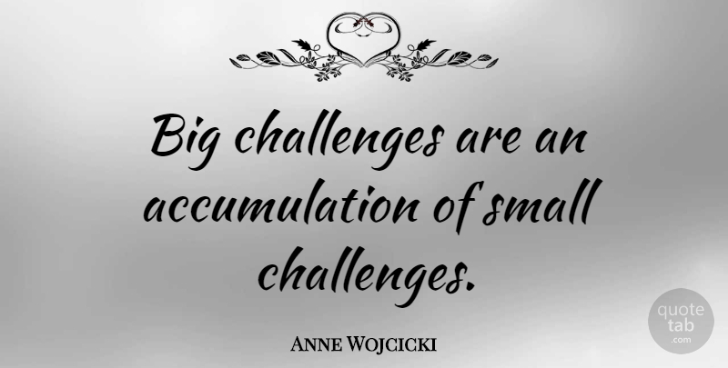 Anne Wojcicki Quote About undefined: Big Challenges Are An Accumulation...