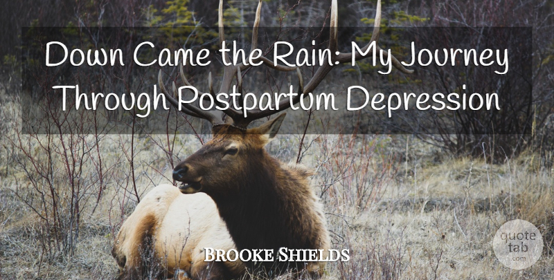 Brooke Shields Down Came The Rain My Journey Through Postpartum