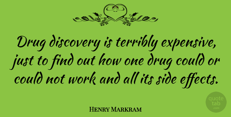 Henry Markram Quote About Side, Terribly, Work: Drug Discovery Is Terribly Expensive...