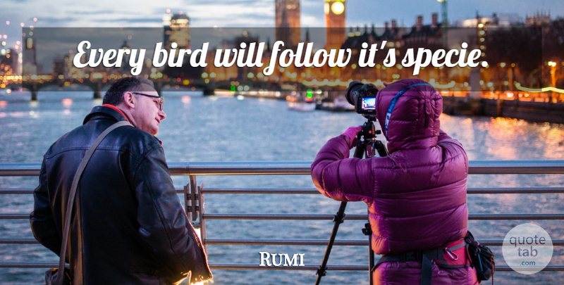 Rumi Quote About Love, Bird: Every Bird Will Follow Its...