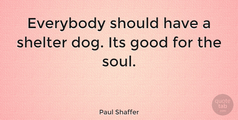 Paul Shaffer Quote About Dog, Should Have, Soul: Everybody Should Have A Shelter...
