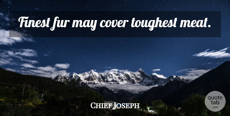 Chief Joseph Quote About May, Meat, Fur: Finest Fur May Cover Toughest...