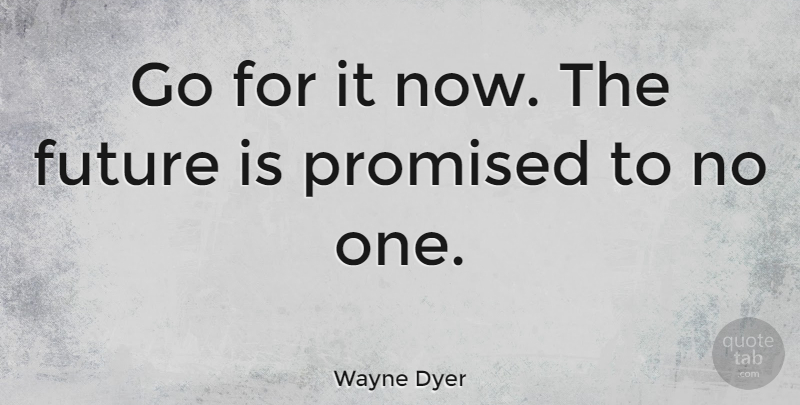 Wayne Dyer Go For It Now The Future Is Promised To No One QuoteTab Interesting The Future Is Now Quote