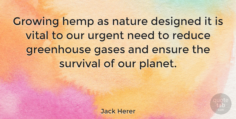 Jack Herer Quote About Survival, Needs, Growing: Growing Hemp As Nature Designed...