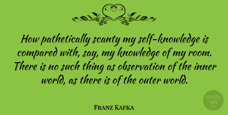 Franz Kafka Quote About Self, Literature, World: How Pathetically Scanty My Self...