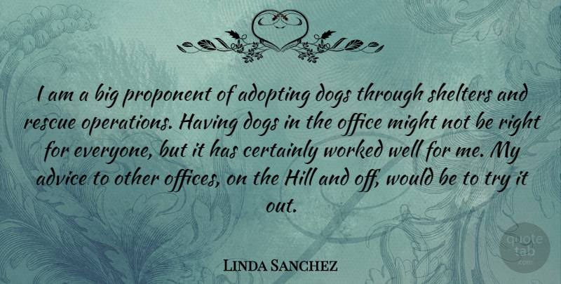 Linda Sanchez Quote About Adopting, Advice, Certainly, Dogs, Hill: I Am A Big Proponent...