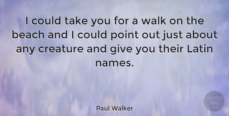Paul Walker I Could Take You For A Walk On The Beach And I Could