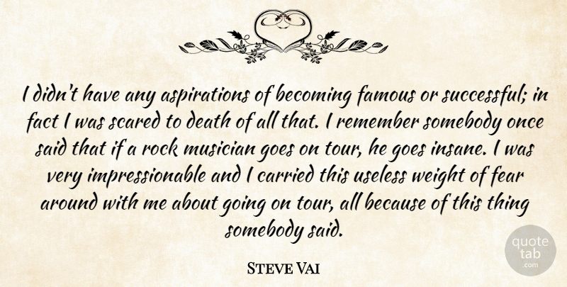 Steve Vai Quote About Successful, Rocks, Insane: I Didnt Have Any Aspirations...