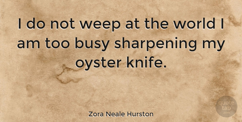 Zora Neale Hurston I Do Not Weep At The World I Am Too Busy
