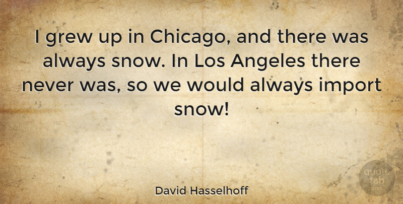 David Hasselhoff Quote About Snow, Chicago, Los Angeles: I Grew Up In Chicago...