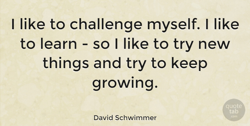 David Schwimmer Quote About Challenges, Trying, Growing: I Like To Challenge Myself...