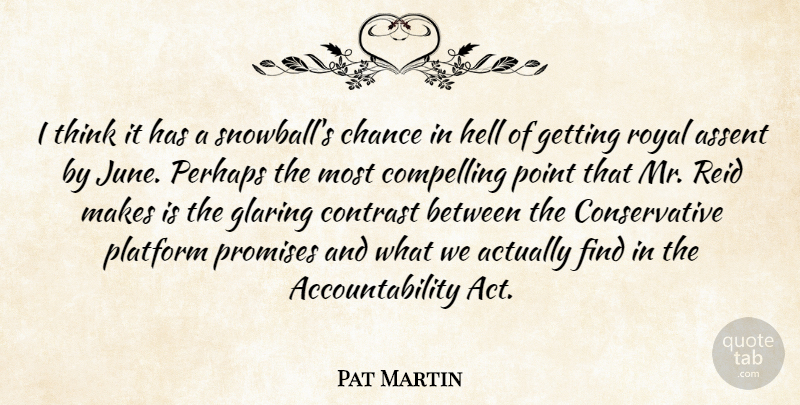 Pat Martin Quote About Assent, Chance, Compelling, Contrast, Glaring: I Think It Has A...