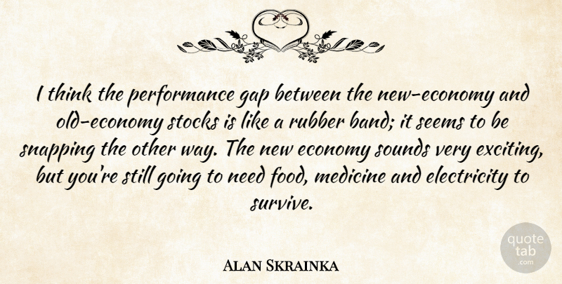 Alan Skrainka Quote About Economy, Electricity, Gap, Medicine, Performance: I Think The Performance Gap...