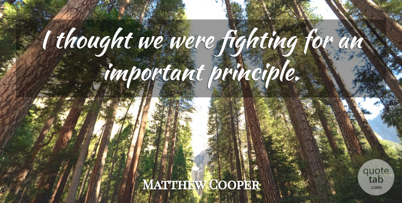 Matthew Cooper Quote About Fighting: I Thought We Were Fighting...