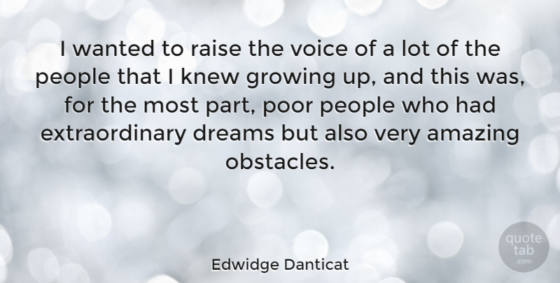 Edwidge Danticat Quote About Amazing, Dreams, Growing, Knew, People: I Wanted To Raise The...