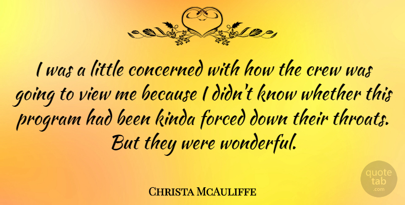 Christa McAuliffe Quote About American Astronaut, Concerned, Crew, Kinda, Program: I Was A Little Concerned...