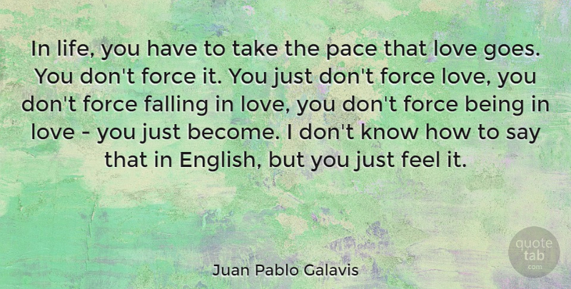 Juan Pablo Galavis Quote About Falling In Love, Love You, Being In Love: In Life You Have To...