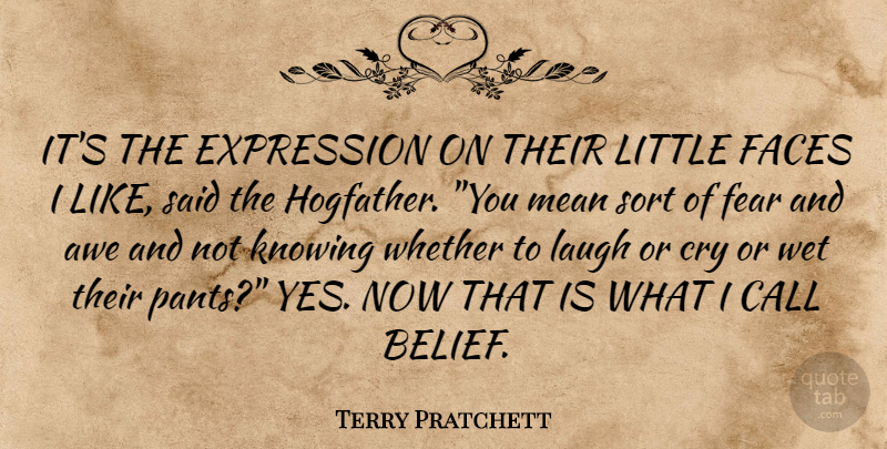 Terry Pratchett Quote About Mean, Expression, Knowing: Its The Expression On Their...