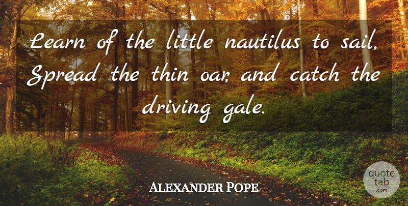 Alexander Pope Quote About Littles, Gale, Driving: Learn Of The Little Nautilus...