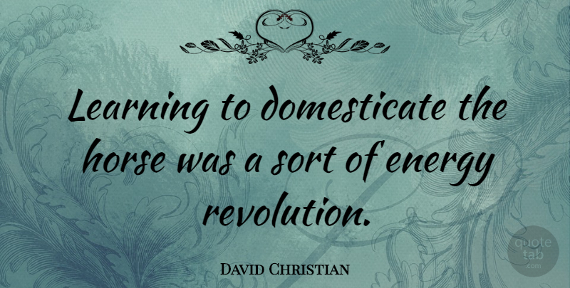 David Christian: Learning to domesticate the horse was a ...