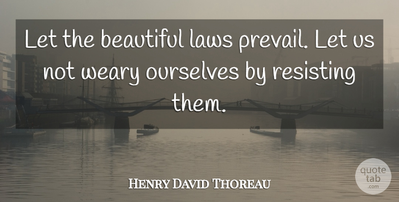 Henry David Thoreau Quote About Beauty, Beautiful, Law: Let The Beautiful Laws Prevail...