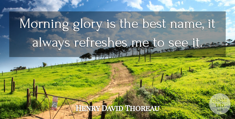 Henry David Thoreau Quote About Morning, Names, Sunrise: Morning Glory Is The Best...