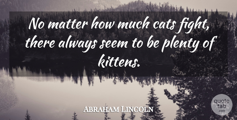 Abraham Lincoln Quote About Anniversary, Funny Sex, Humor: No Matter How Much Cats...