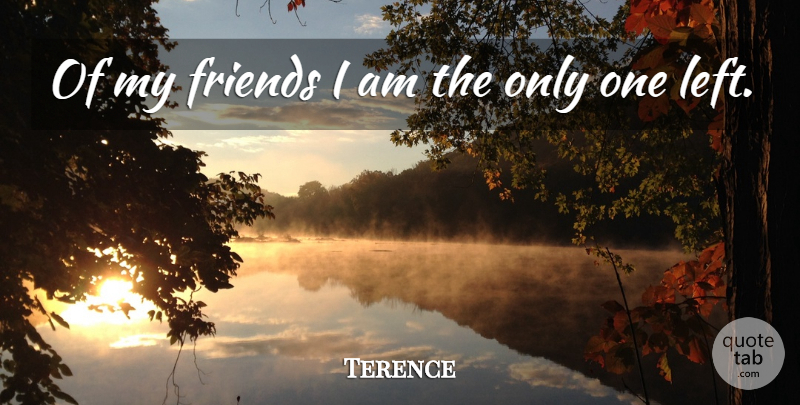 Terence Of My Friends I Am The Only One Left Quotetab