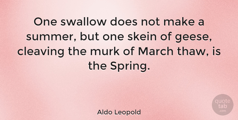 Aldo Leopold Quote About Summer, Spring, Doe: One Swallow Does Not Make...
