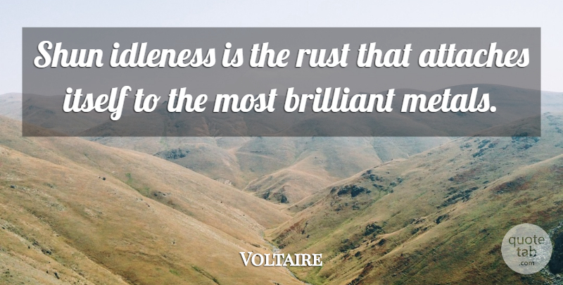 Voltaire Quote About Brilliant, Idleness, Itself, Rust, Shun: Shun Idleness Is The Rust...