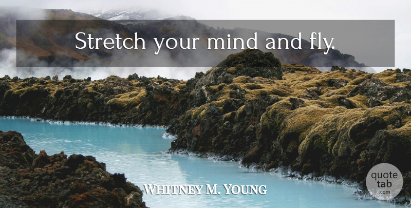 Whitney M Young Stretch Your Mind And Fly Quotetab