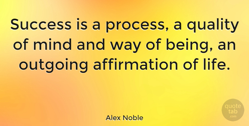 Alex Noble Quote About French Novelist, Mind, Outgoing, Success: Success Is A Process A...