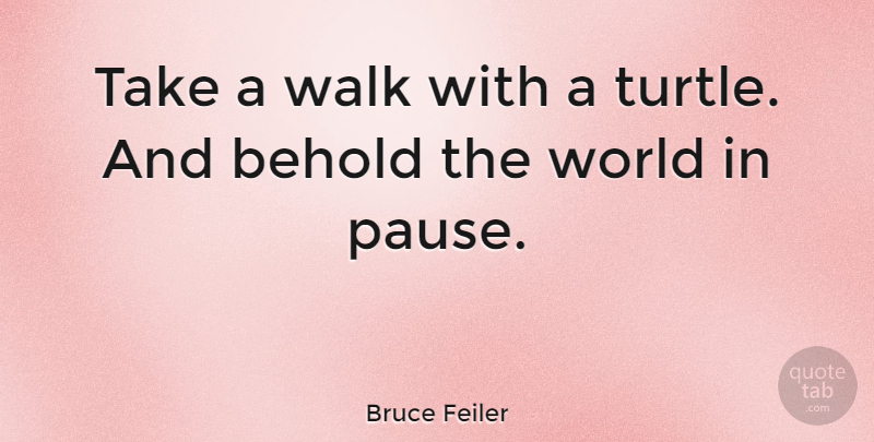 Bruce Feiler Take A Walk With A Turtle And Behold The World In