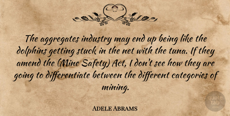 Adele Abrams The Aggregates Industry May End Up Being Like The
