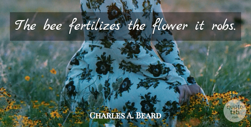 Charles A. Beard Quote About Flower, Bees, Grind: The Bee Fertilizes The Flower...