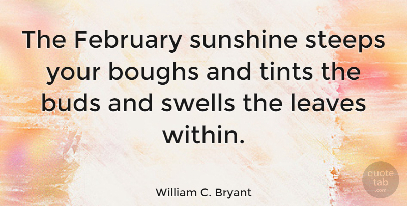 William C. Bryant Quote About Sunshine, Bud, February: The February Sunshine Steeps Your...