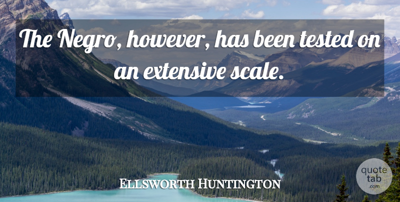 Ellsworth Huntington Quote About Scales, Tested, Has Beens: The Negro However Has Been...