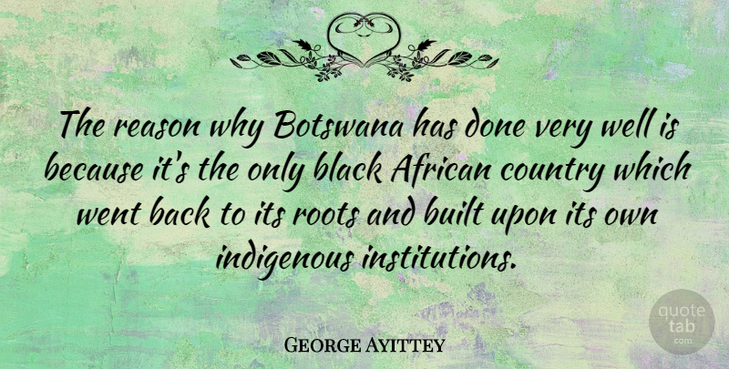 George Ayittey Quote About African, Built, Country, Indigenous: The Reason Why Botswana Has...