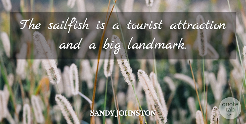 Sandy Johnston Quote About Attraction, Tourist: The Sailfish Is A Tourist...