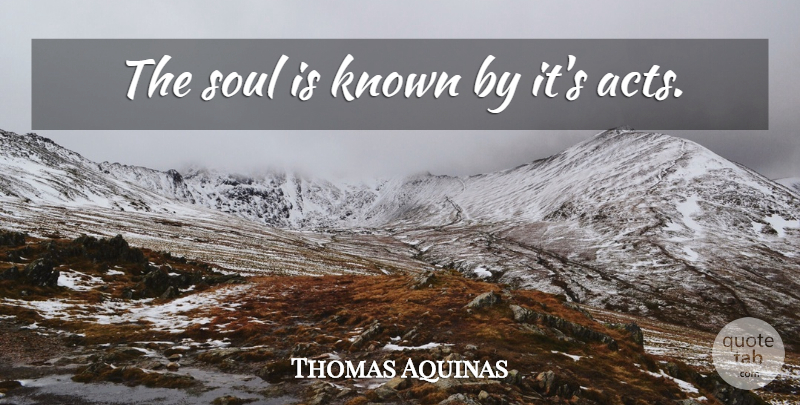 Thomas Aquinas: The soul is known by it\'s acts. | QuoteTab