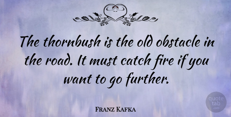 Franz Kafka Quote About Fire, Want, Literature: The Thornbush Is The Old...