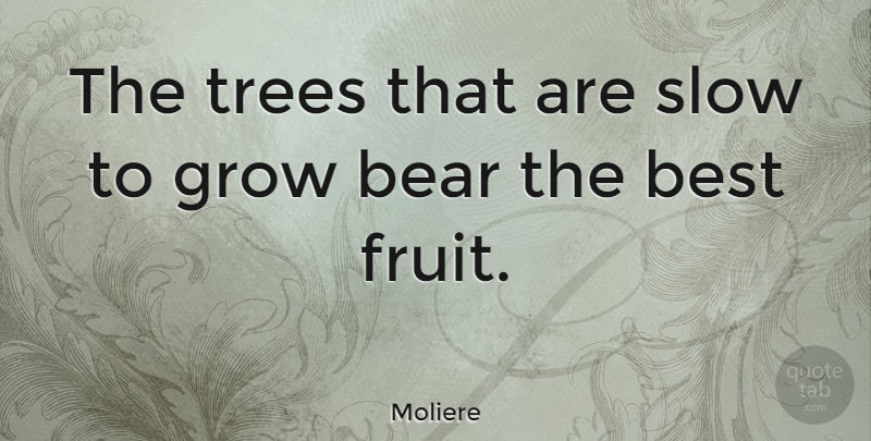 Moliere Quote About Inspirational, Success, Patience: The Trees That Are Slow...